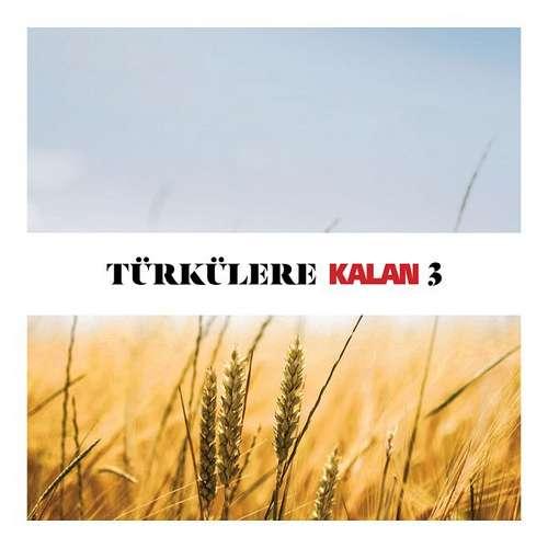 Çeşitli Sanatçılar Yeni Türkülere Kalan Vol. 3 Full Albüm İndir