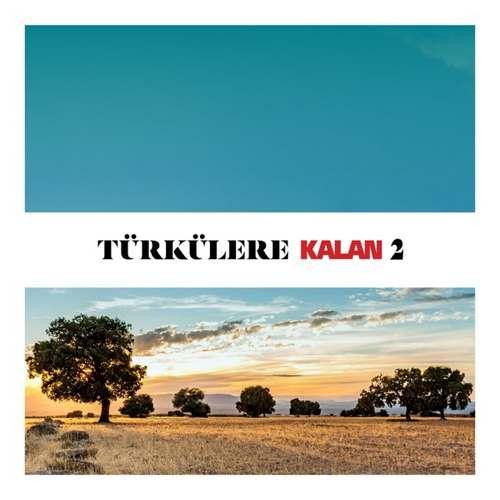 Çeşitli Sanatçılar Yeni Türkülere Kalan, Vol. 2 Full Albüm İndir