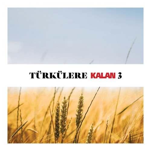 Çeşitli Sanatçılar Yeni Türkülere Kalan, Vol. 3 Full Albüm İndir