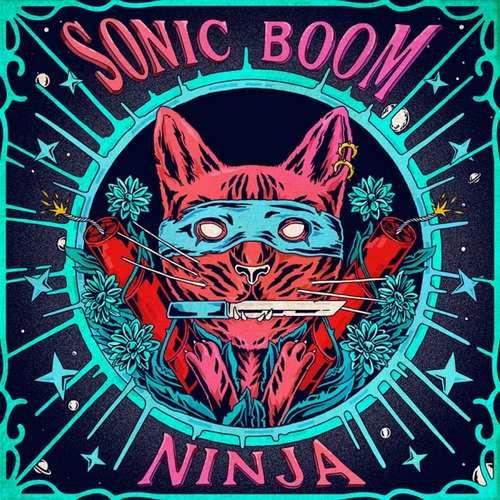 Sonic Boom Yeni Ninja Şarkısını İndir