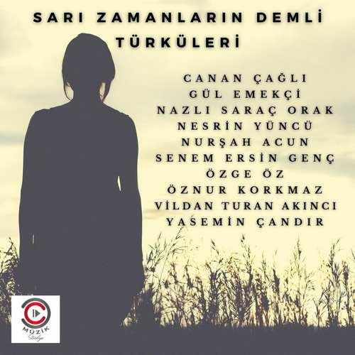 Çeşitli Sanatçılar Yeni Sarı Zamanların Demli Türküleri Full Albüm İndir