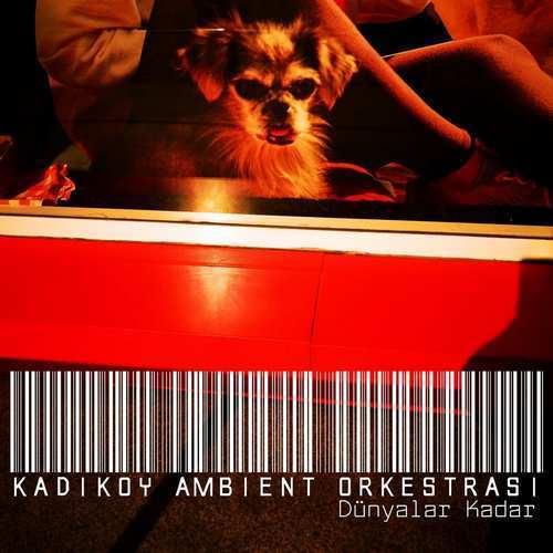 Kadıköy Ambient Orkestrası Yeni Dünyalar Kadar Şarkısını İndir
