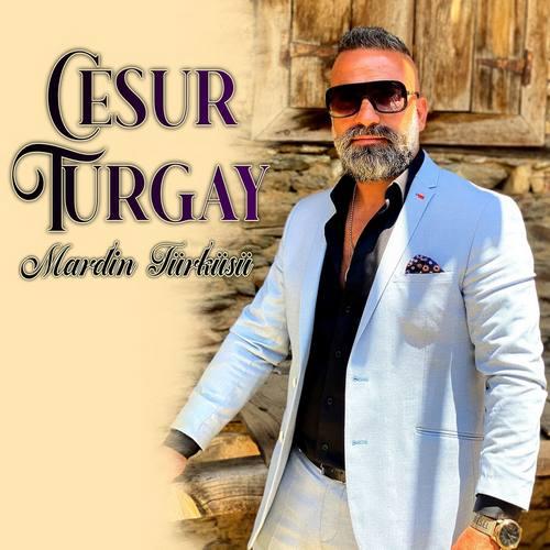 Cesur Turgay Yeni Mardin Türküsü Şarkısını İndir