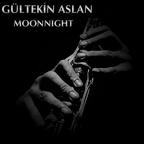 Gültekin Aslan Yeni Moonnight Full Albüm İndir