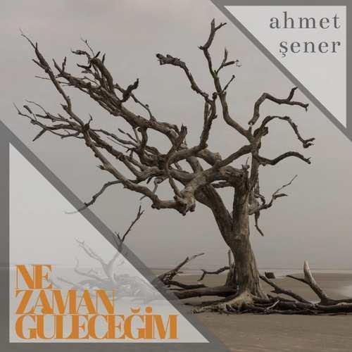 Ahmet Şener Yeni Ne Zaman Güleceğim Şarkısını İndir